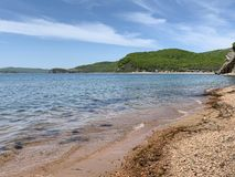 Coast of the Russkiy Russian, Russky island opposite the island of Shkot in summer. Vladivostok, Russia.  stock photo