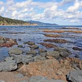 Coast of Sakhalin Island Stock Photography