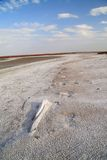 Coast salt lake. salty sand. Hot summer Stock Photo