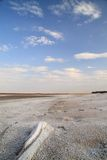 Coast salt lake. salty sand. Royalty Free Stock Image