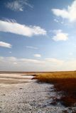 Coast salt lake. salty sand. Hot summer. Royalty Free Stock Images