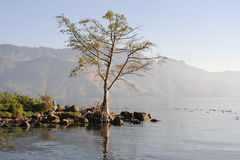The coast of San Pedro on lake Atitlan Stock Photo