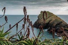 Coast of Sao Roque, Sao Miguel, Azores Islands, Portugal.  stock photography