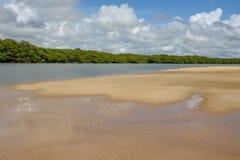 The coast of Sauipe on Bahia, Brazil. The coast of Sauipe on Bahia in Brazil royalty free stock photos