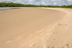 The coast of Sauipe on Bahia, Brazil. The coast of Sauipe on Bahia in Brazil stock images