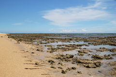 The coast of sea view at low tide. royalty free stock photos