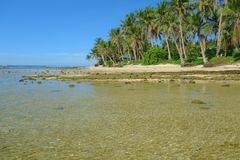 The coast of Siargao Island. Siargao Island in the Pacific Ocean, Philippines Stock Photos