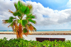Coast in Spain. Royalty Free Stock Image