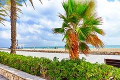 Coast in Spain. Royalty Free Stock Photo