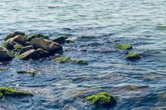 Coast with stones, not convenient entry into the sea.  royalty free stock images