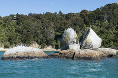 Coast with stunning beaches, New Zealand Royalty Free Stock Photography