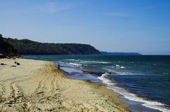 Coast in Svetlogorsk Stock Photos