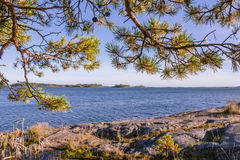 The coast of Sweden in early morning Royalty Free Stock Photo
