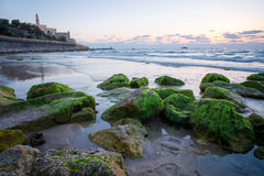 The coast of Tel Aviv Stock Images