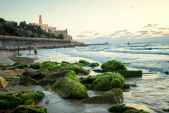 The coast of Tel Aviv Royalty Free Stock Photo