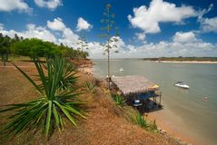 Coast of Tibau do Sul near pipa brazil Royalty Free Stock Image