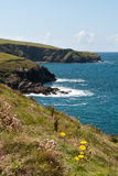 Coast to Port Isaac Royalty Free Stock Image