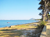 Coast with trees and grass beach between Alcudia and Pollenca, Majorca. Trees at coast on grassland, ocean view with mountain in background, road aside Stock Photos