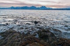 Coast of Tromso city in Tromsoya Island under the Midnight Sun i Royalty Free Stock Photography