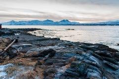 Coast of Tromso city in Tromsoya Island under the Midnight Sun i Stock Photos