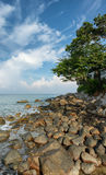 Coast of the tropical sea. Vertical landscape. Thailand, Phuket Stock Images