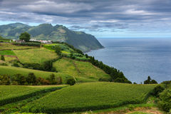 Coast view over Povoacao in Sao Miguel, Azores Royalty Free Stock Images