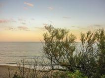 Coast View of Piriapolis Royalty Free Stock Photo