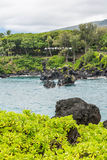 Coast at Wai'anapanapa, Maui Stock Photography