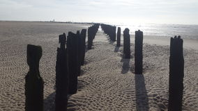 Coast Wather and Sand. Old stakes on beach Stock Photos