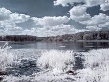 Coast of the White lake Stock Photography