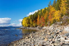 Coast of the White Sea, autumn Royalty Free Stock Photo