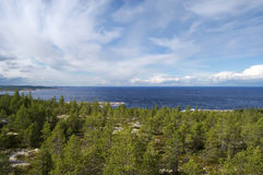 The coast of the White sea covered with coniferous. Wood. The dark blue sky with white clouds stock photo