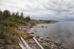 Coast of White sea, northern Russia Royalty Free Stock Image
