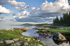 Coast of the White sea Royalty Free Stock Photo
