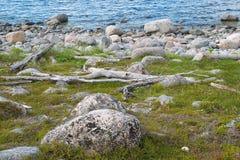 The coast of the White Sea Stock Photo