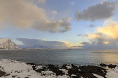 Coastal area on Lofoten Islands Royalty Free Stock Photo