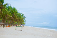 A coastal beach in Lagos. A beach resort in Lagos with lots of Palm trees Stock Photography