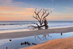 Coastal Beach Landscape South Carolina Royalty Free Stock Image