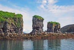 Coastal Bird Rock Royalty Free Stock Photo