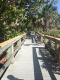 Coastal Boardwalk. Stroll along the tropical landscape by beach royalty free stock images