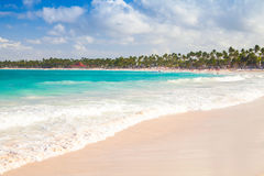Coastal Caribbean landscape. Sandy beach. On the Atlantic ocean, Hispaniola island, Dominican republic. Punta Cana royalty free stock photography