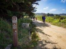 Free Coastal Chaparral With Montara Mountain In The Distance, Montara State Beach Stock Photos - 94431953