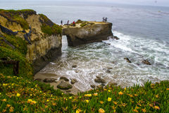 Coastal Cliff in Santa Cruz Stock Photography