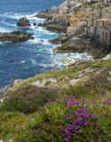 Coastal cliffs Stock Photography