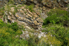 Coastal cliffs mountain Opuk with bird nests. Stock Image