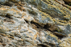Coastal cliffs mountain Opuk with bird nests. Stock Photography