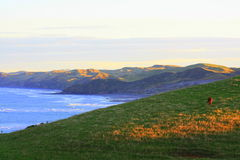 Coastal dawn. Looking south towards Raglan Harbour at dawn on the West Coast of the North Island, New Zealand Stock Photo