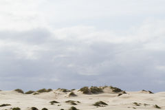 Coastal dunes Royalty Free Stock Photography