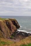 Coastal environment Royalty Free Stock Images