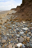 Coastal Erosion. On the boulder clay cliffs of Holderness, England Royalty Free Stock Image